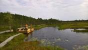 Riisa Swamp Study Trail