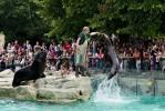 Tiergarten Schonbrunn - Wien Zoo