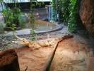 Aqua-Zoo