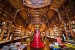 Lello Bookstore (Livraria Lello)