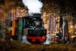 Mazbānītis' Narrow-Gauge Railway Track
