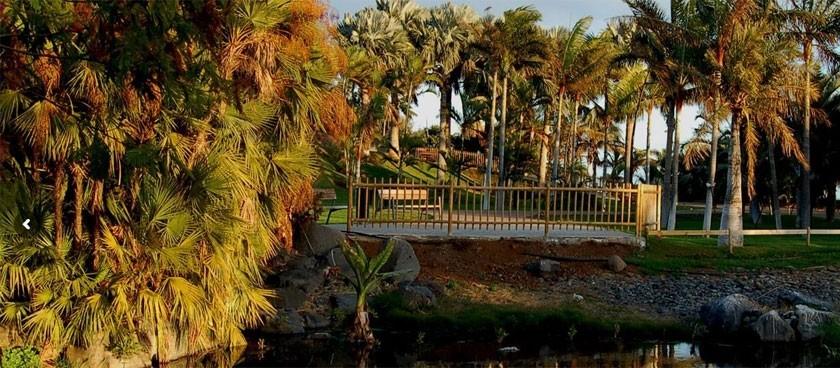 Palmetum Santa Cruz Jardín Botanico