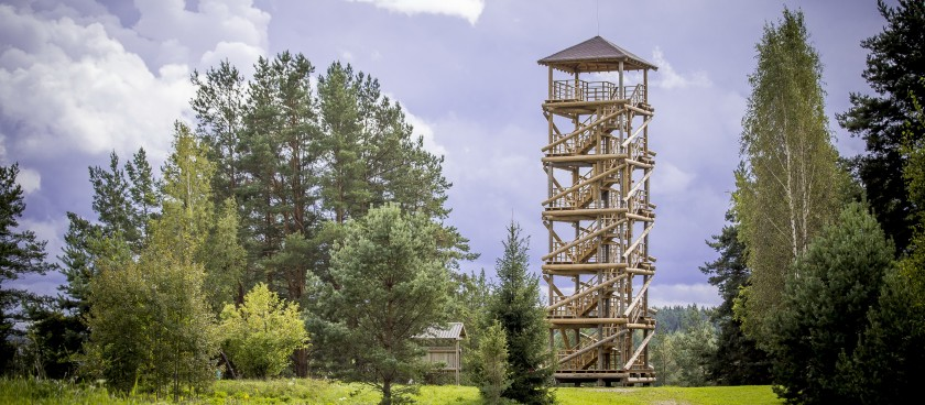 Sightseeing Tower in Vasargeliski