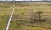 Stiklu Bog Nature Trail
