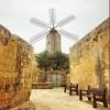 The Xarolla Windmill